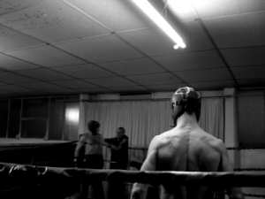 'boxer 4,' by mirko delcaldo of sxc.hu, c2008