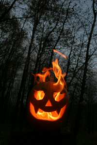 Flaming pumpkin in the woods